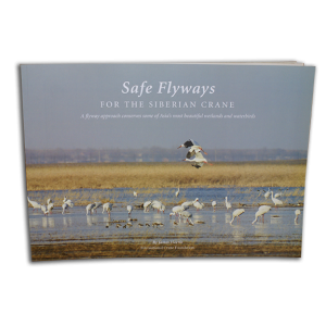 Safe-Flyaways-book