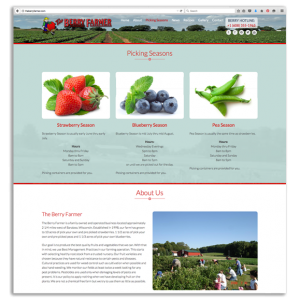 The Berry Farmer